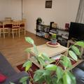Alan Bullock Close 2 bed flat sitting room